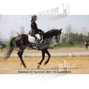 concours-de-dressage-ecurie-les-granmoulieres-27-mai-2012 / club-2-grand-prix-concours-de-dressage-ecurie-les-gramoulieres