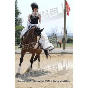 concours-de-dressage-ecurie-les-granmoulieres-27-mai-2012 / club-1-libre-concours-de-dressage-ecurie-les-gramoulieres-2012