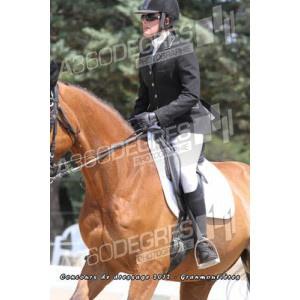 concours-de-dressage-ecurie-les-granmoulieres-27-mai-2012 / club-1-grand-prix-concours-de-dressage-ecurie-les-gramoulieres