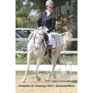 concours-de-dressage-ecurie-les-granmoulieres-27-mai-2012 / club-elite-grand-prix-concours-de-dressage-ecurie-gramoulieres